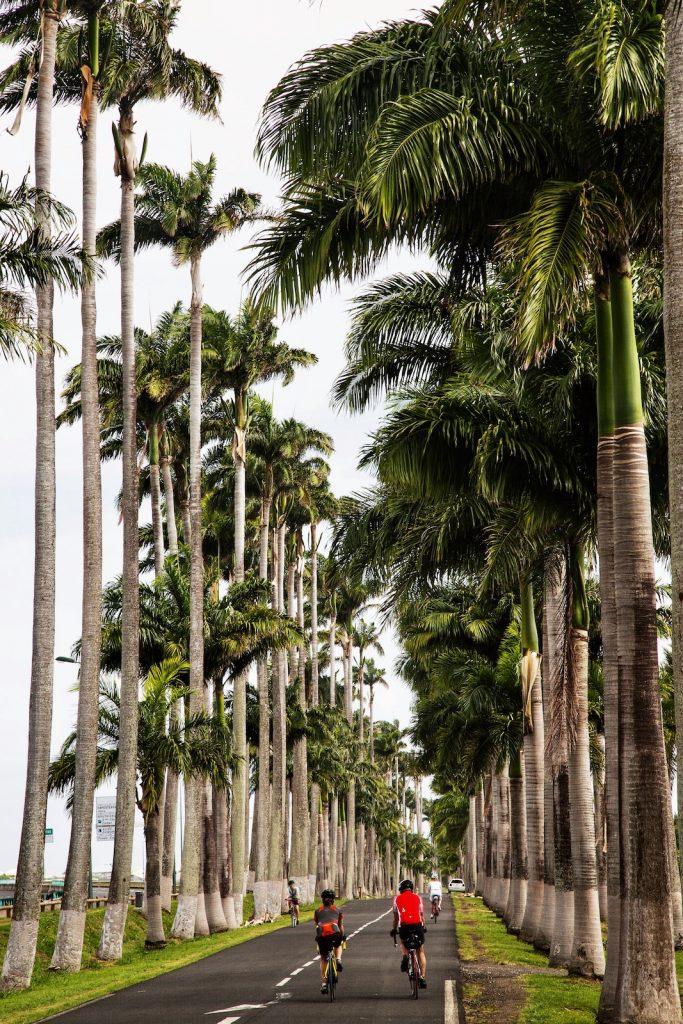 Destinations soleil - Guadeloupe