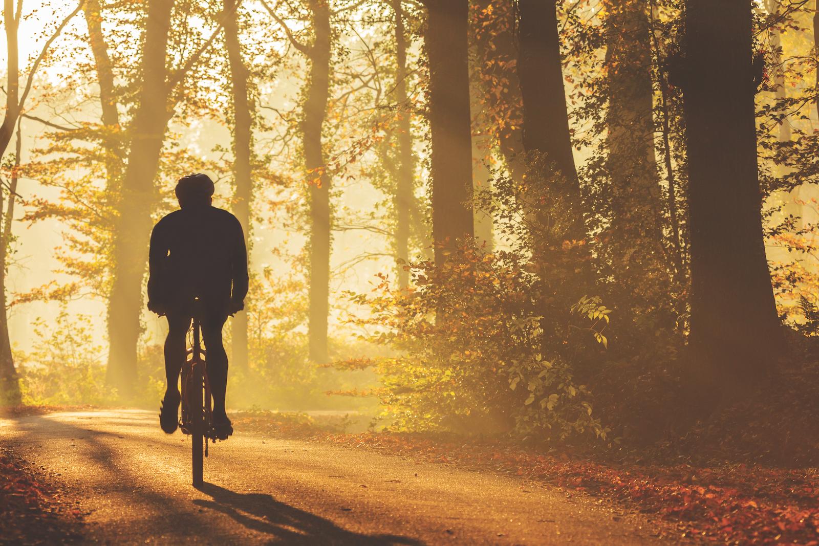 novembre vélo truc