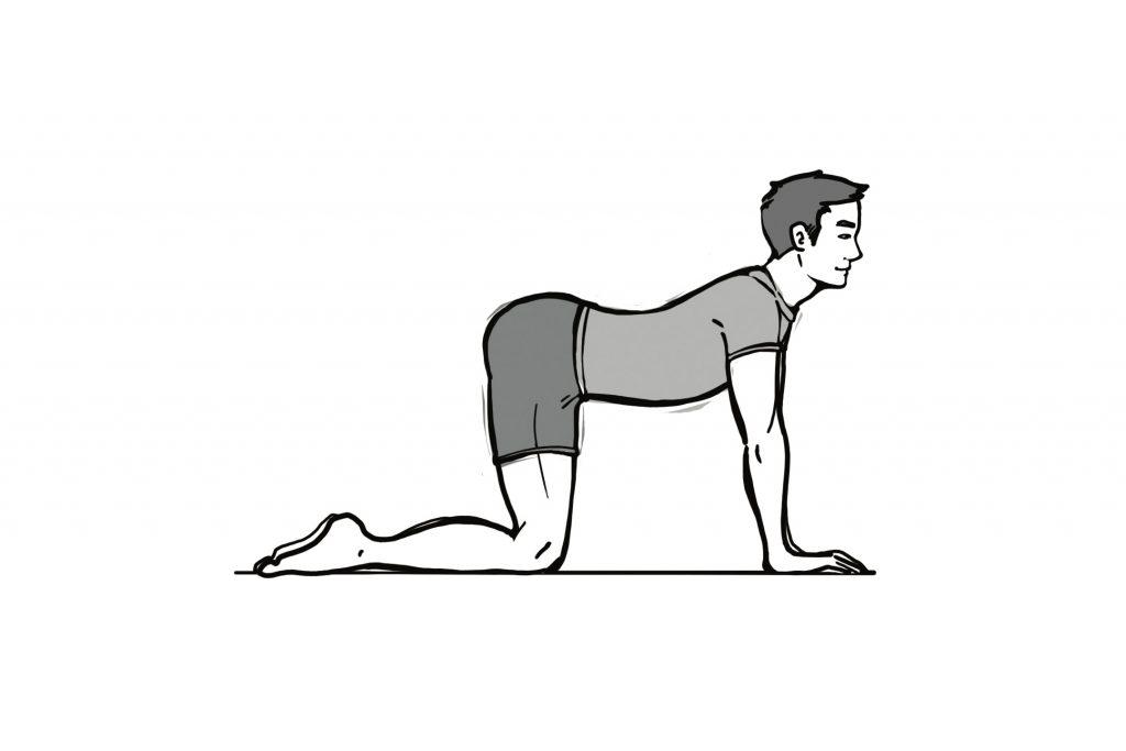 Exercise mal de dos 5a