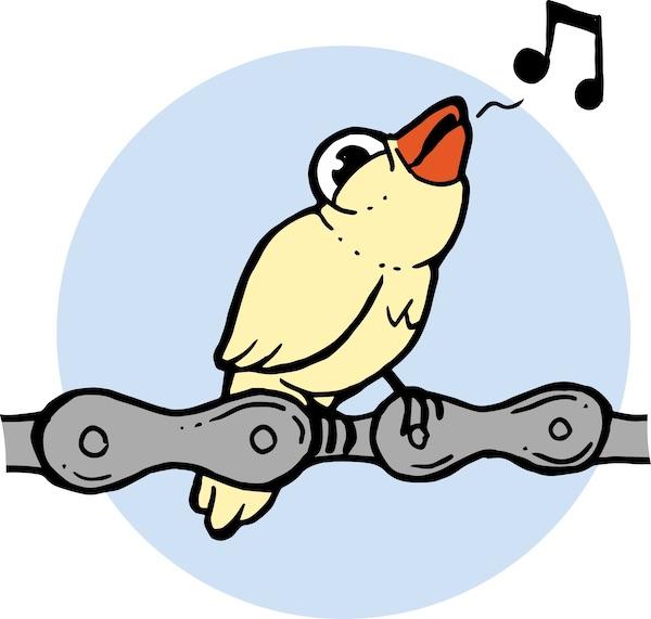 chaine bruit oiseau